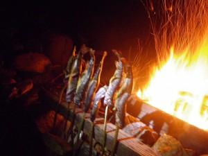 焚き火と岩魚は最高の組み合わせ