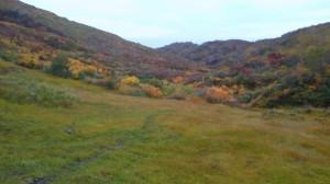 湿原と紅葉