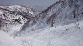 ウラヒヨの広ーい斜面を気持ちよく滑る。