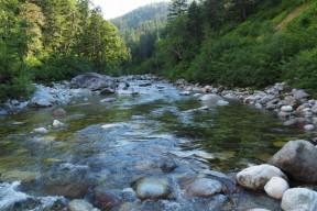 源流域とはいえ圧倒的な水量