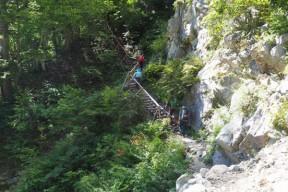 梯子の階段