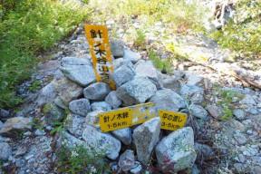 針ノ木本谷出合の標識
