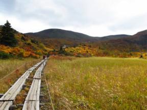 名残ヶ原から見る栗駒山