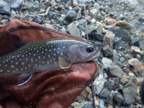 岩魚釣りの始まり