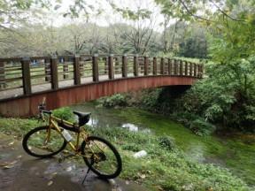 水源のある公園は綺麗な流れ