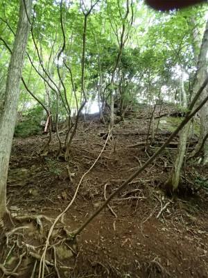 破線ルートの斜面のロープ