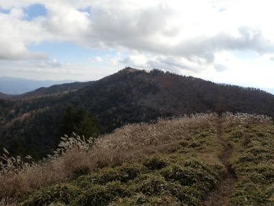 大菩薩峠からはカヤトの尾根道が続く