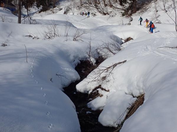 沢は埋まってなく春の雪解けのよう。